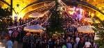 Antwerp Pride Midsummer Party