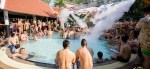 Bear Pool Party Bangkok
