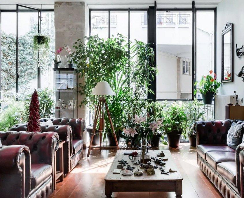 Loft With a Leafy Garden Patio