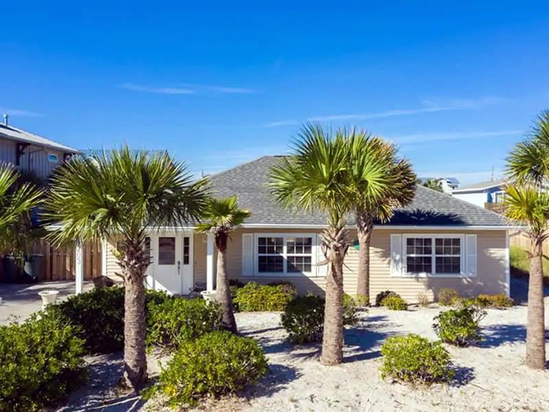 Palm Trees House