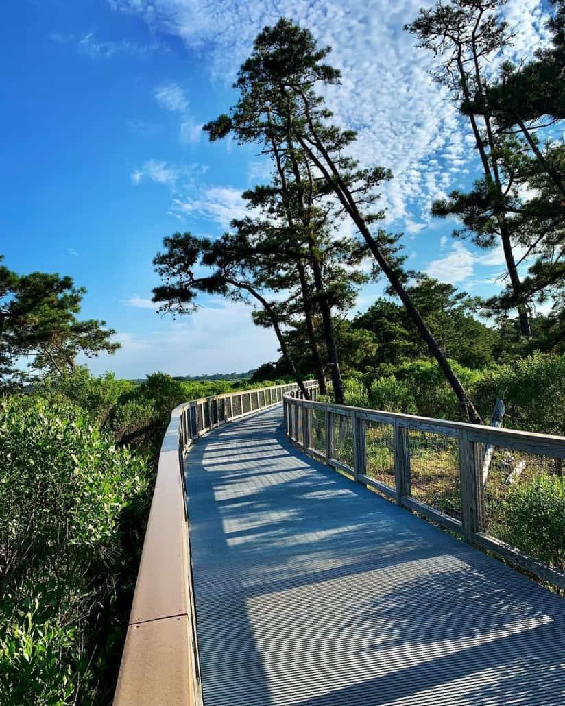 Gordons Pond Trail