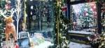 Navidad junto al mar Ogunquit