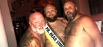 Stockholm Bear Weekend