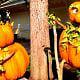 Фестиваль урожая в Долливуде и LumiNights