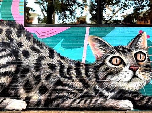 Plaza District Festival et Plaza Walls Mural Expo