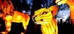 The Asian Lantern Spectacular