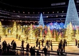 Encanta la Navidad, San Petersburgo, Florida
